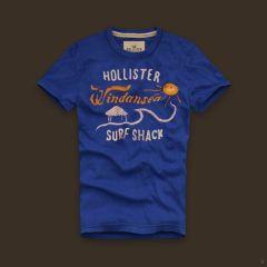 Hollister-T-Shirts-367_LRG